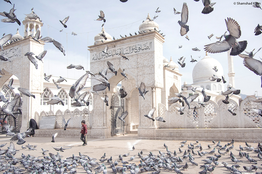 Pigeons flock in front of a mosque - Travel Photography by LLA alumni Shamshad Khan