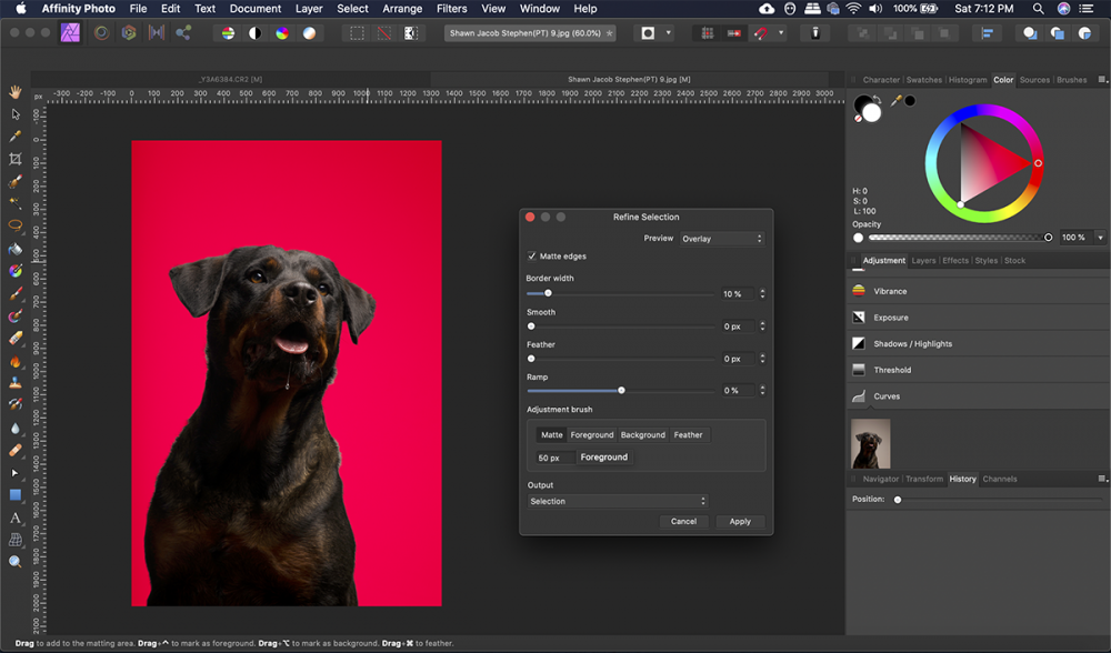 Make precise selections using the Refine Edge tool. Woof Woof!